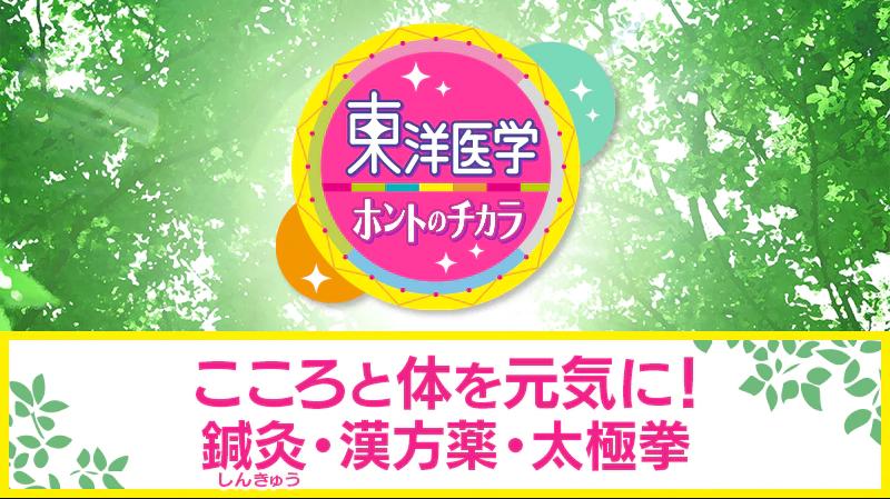 NHK総合『東洋医学ホントのチカラ 今こそ元気に!健康長寿SP』 放送のお知らせ